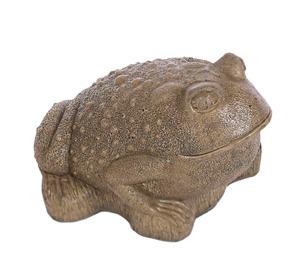 Lg Frog Sculpted Eyes
