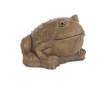 Md Frog Sculpted Eyes