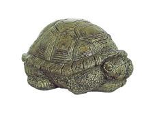 Med Sleeping Turtle