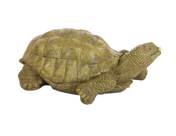 XL Turtle Ftn Animal