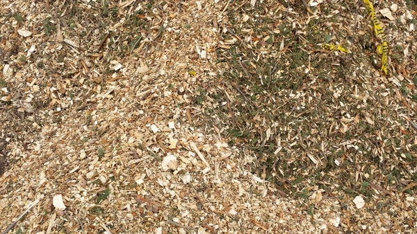Chipped Mulch